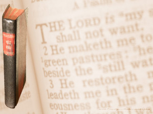 bible901
